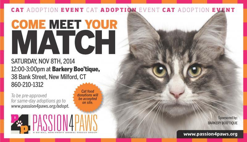 CAT ADOPTION EVENT - NEW MILFORD, CT